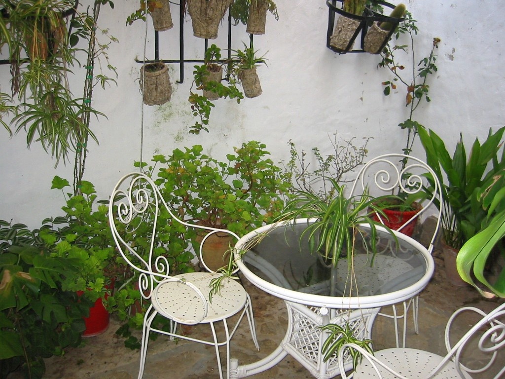14-casadelmunicipal-patio